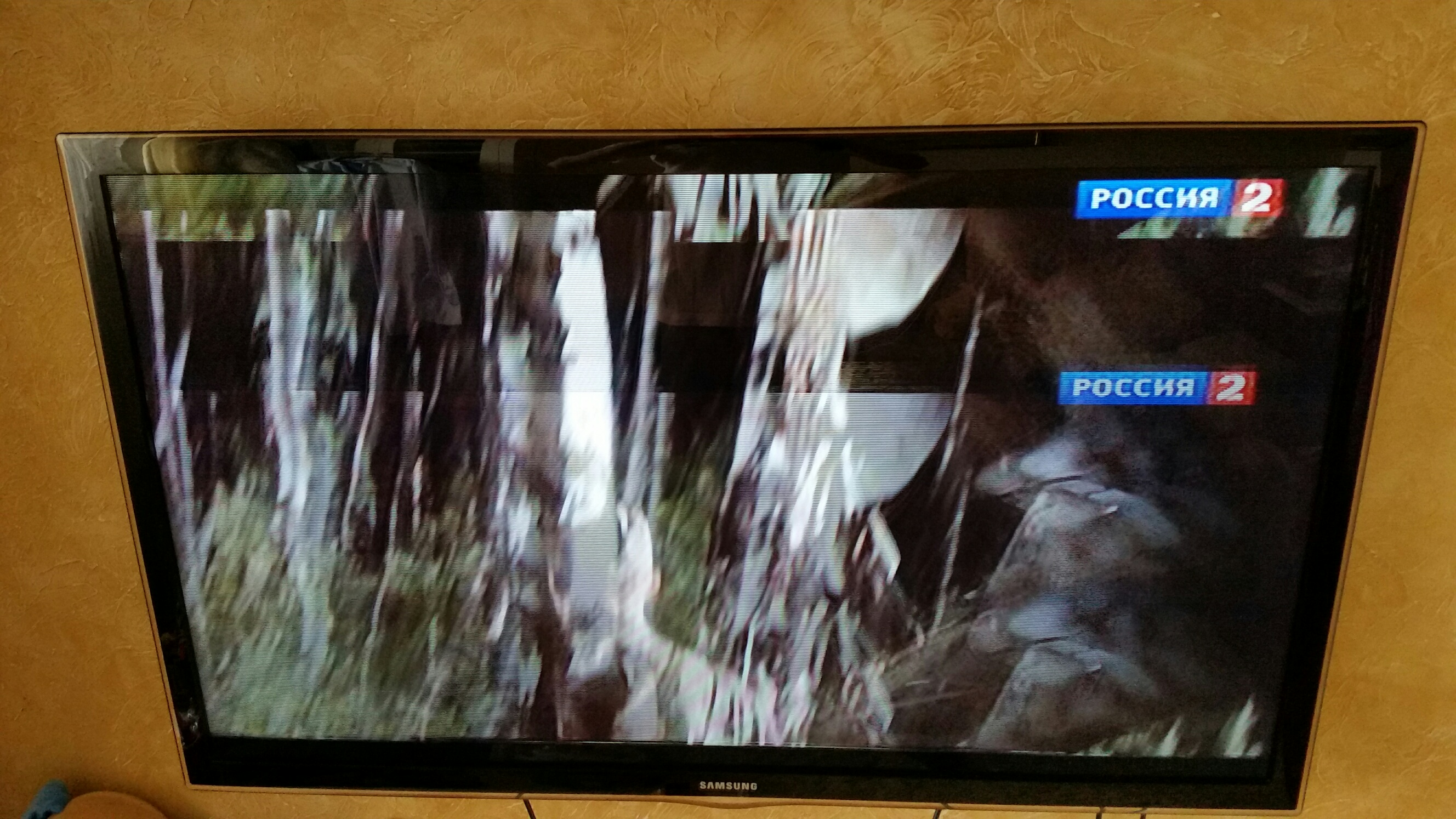 изображение двоится на телевизоре